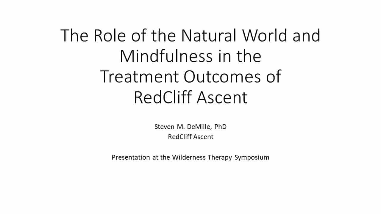 The Role of the Natural World and Mindfulness